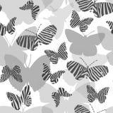 Reticolo senza giunte con le farfalle Fotografie Stock Libere da Diritti