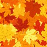 Reticolo senza giunte con le foglie di acero di autunno. Vettore Immagini Stock