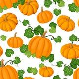 Reticolo senza giunte con le zucche arancioni ed il le verde Fotografia Stock