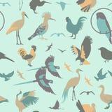 Reticolo senza giunte degli uccelli Stile piano di vettore Fotografia Stock Libera da Diritti