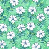 Reticolo senza giunte dei bei fiori Fotografia Stock
