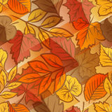 Reticolo senza giunte dei fogli di autunno Immagini Stock Libere da Diritti