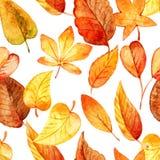 Reticolo senza giunte dei fogli di autunno watercolor royalty illustrazione gratis