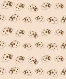 Reticolo senza giunte dei Ladybugs Fotografia Stock Libera da Diritti
