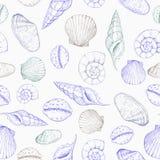Reticolo senza giunte dei seashells Illustrazione disegnata a mano di vettore Priorità bassa marina illustrazione vettoriale
