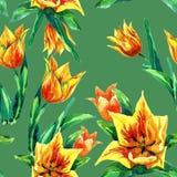 Reticolo senza giunte dei tulipani Immagini Stock Libere da Diritti