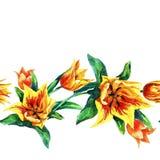 Reticolo senza giunte dei tulipani Immagine Stock