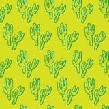Reticolo senza giunte del cactus Immagini Stock Libere da Diritti