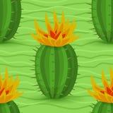 Reticolo senza giunte del cactus Fotografie Stock