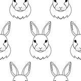 Reticolo senza giunte del coniglio Immagini Stock