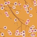 Reticolo senza giunte del fiore di ciliegia Fotografia Stock Libera da Diritti