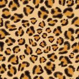 Reticolo senza giunte del leopardo Fotografia Stock Libera da Diritti