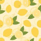 Reticolo senza giunte del limone Immagine Stock Libera da Diritti