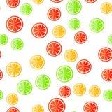 Reticolo senza giunte dell'agrume Frutta affettata su un bianco Fotografia Stock