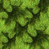 Reticolo senza giunte dell'albero di Natale Immagini Stock Libere da Diritti