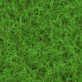 Reticolo senza giunte dell'erba verde Immagini Stock