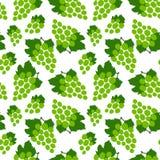 Reticolo senza giunte dell'uva Mazzo verde di uva Bacca fresca disegnata a mano Fondo di schizzo di vettore Carta da parati di sc royalty illustrazione gratis