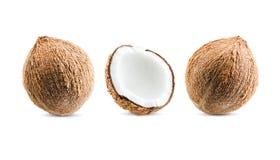 Reticolo senza giunte della frutta Noce di cocco isolata su fondo bianco Co Fotografia Stock Libera da Diritti