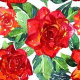 Reticolo senza giunte delle rose Immagine Stock