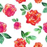 Reticolo senza giunte delle rose Immagini Stock