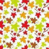 Reticolo senza giunte di autunno Fotografia Stock Libera da Diritti
