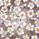 Reticolo senza giunte di Sakura Immagine Stock Libera da Diritti