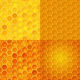 Reticolo senza giunte di vettore con le celle del miele, pettini Immagini Stock