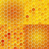 Reticolo senza giunte di vettore con le celle del miele, pettini Immagine Stock Libera da Diritti