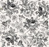 Reticolo senza giunte Fiori isolati realistici Priorità bassa dell'annata Wildflowers di Rose Petunia della camomilla che disegna illustrazione di stock