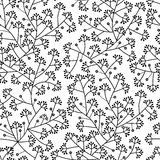 Reticolo senza giunte floreale in bianco e nero Fotografia Stock