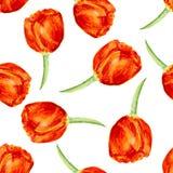 Reticolo senza giunte floreale con i tulipani watercolor Immagini Stock Libere da Diritti