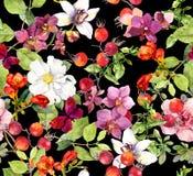 Reticolo senza giunte floreale Foglie di estate, fiori Priorità bassa dell'acquerello immagini stock libere da diritti