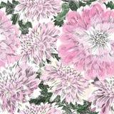 Reticolo senza giunte floreale Fondo del crisantemo del fiore Flouri royalty illustrazione gratis