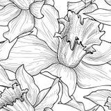 Reticolo senza giunte floreale Fondo di scarabocchio del fiore Engra floreale Fotografia Stock
