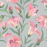 Reticolo senza giunte floreale Priorità bassa del fiore Carta da parati w di Flourish Fotografie Stock