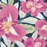 Reticolo senza giunte floreale Priorità bassa del fiore Fiorisca il giardino della natura illustrazione di stock