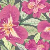 Reticolo senza giunte floreale Priorità bassa del fiore Fiorisca il luccio della natura illustrazione di stock