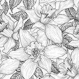Reticolo senza giunte floreale Priorità bassa del fiore Floreale inciso Fotografia Stock Libera da Diritti