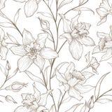 Reticolo senza giunte floreale Priorità bassa del fiore Ornamento floreale delle mattonelle Fotografia Stock Libera da Diritti