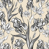 Reticolo senza giunte floreale Priorità bassa del fiore Testo senza cuciture floreale Immagine Stock
