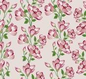 Reticolo senza giunte floreale Priorità bassa del fiore Testo senza cuciture floreale Immagine Stock Libera da Diritti