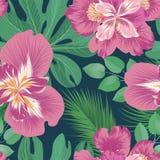 Reticolo senza giunte floreale Priorit? bassa del fiore Fiorisca il giardino illustrazione vettoriale