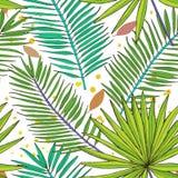 Reticolo senza giunte floreale Raccolta con le foglie tropicali nello sket Immagini Stock