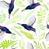 Reticolo senza giunte tropicale royalty illustrazione gratis
