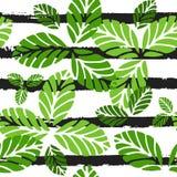 Reticolo senza giunte tropicale Fondo di vettore con le foglie verdi e le bande nere Fotografia Stock Libera da Diritti