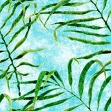 Reticolo senza giunte tropicale Palma d'ondeggiamento dell'acquerello illustrazione vettoriale