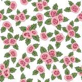 Reticolo senza giunte variopinto Rose rosa disegnate a mano su fondo bianco Fotografie Stock