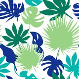 Reticolo tropicale senza giunte dei fogli Fotografie Stock Libere da Diritti