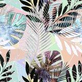 Reticolo tropicale senza giunte Foglie di palma Fotografia Stock Libera da Diritti