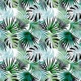 Reticolo tropicale senza giunte Foglie variopinte, foglie di palma su un fondo leggero Immagine Stock